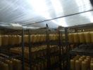 Производство копчёных сыров